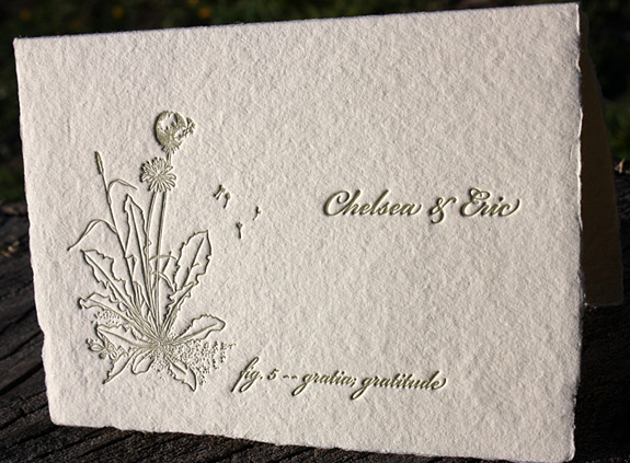 Chelsea and Eric: thank you note with botanical figure letterpressed on handmade paper in sage
