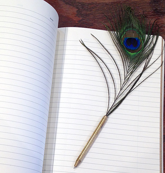 Notebook and quill pen