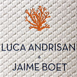 Luca and Jaime: dual language, destination beach wedding invitation, letterpressed with wave pattern and coral